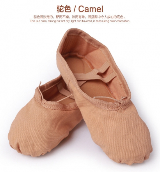 BS0001 Ballet Shoes