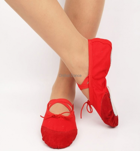 BS0002 Ballet Shoes
